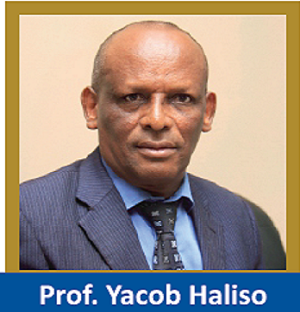 Senior Vice President Management Services